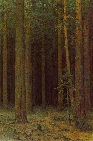 forest reserve pine grove 1881 XX the museum of russian art kiev ukraine